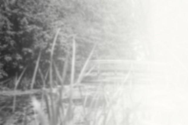 Velkommen til Slekt og Data Haugaland